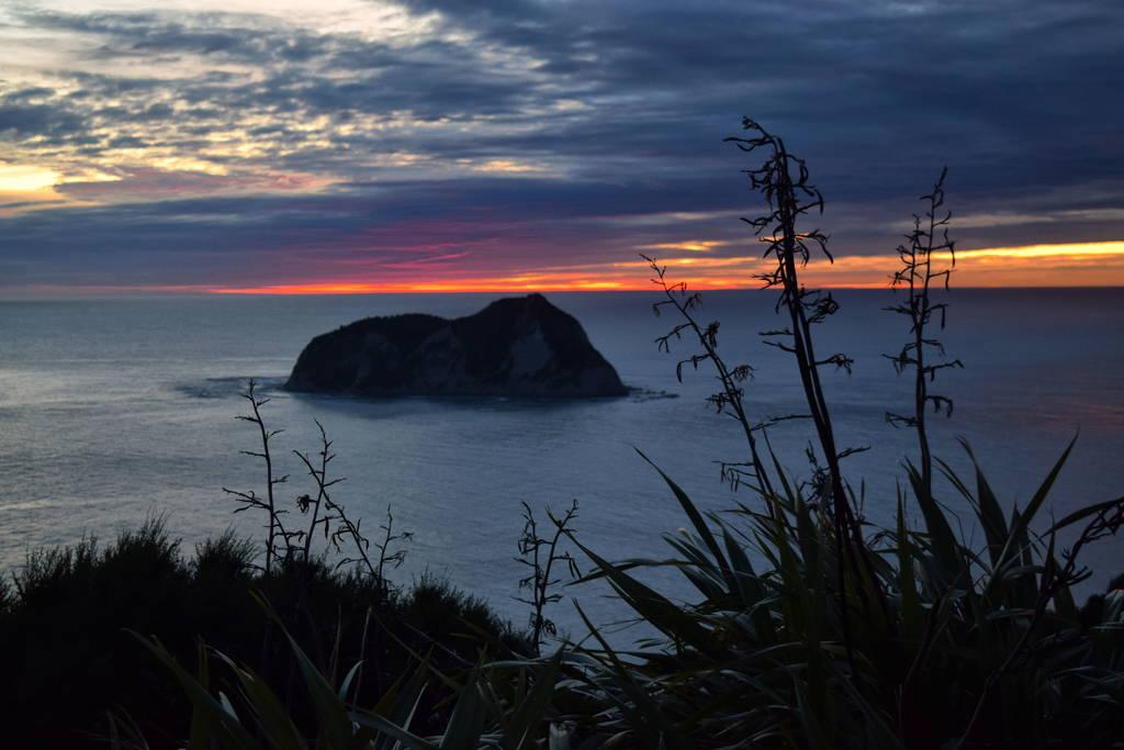 Luna Miel Nueva Zelanda